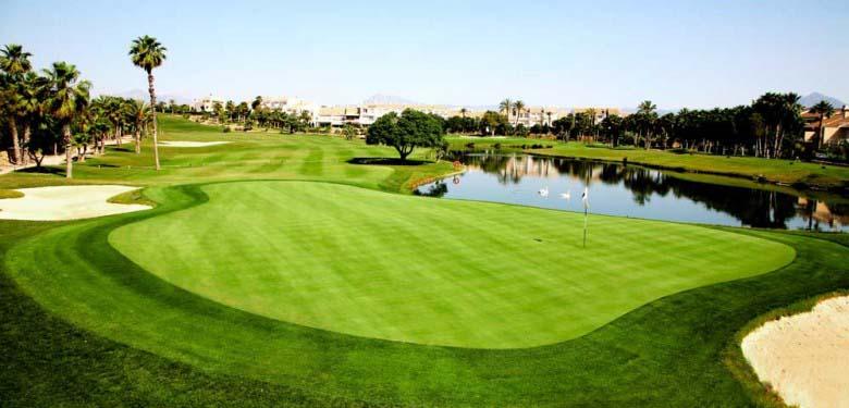 experiencia deporte golf